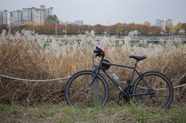 kolo za městem